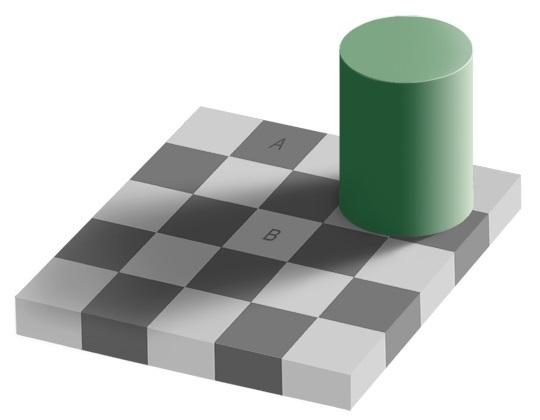 Professori Edward H. Adelsonin illuusiossa ruutu A ja ruutu B ovat samanväriset.